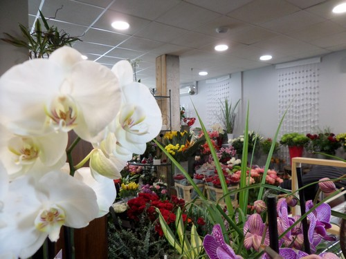 verpillere magasin de fleurs (3).JPG