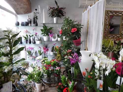 verpillere magasin de fleurs (6).JPG