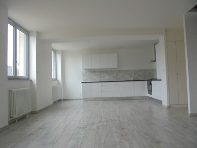 GIVORS LOCATION ORS IMMOBILIER.jpg