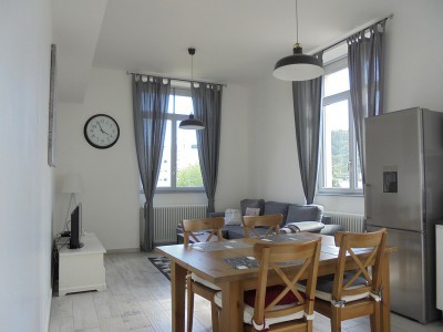 ANNONCE LOCATION APPARTEMENT MEUBLE GIVORS.jpg