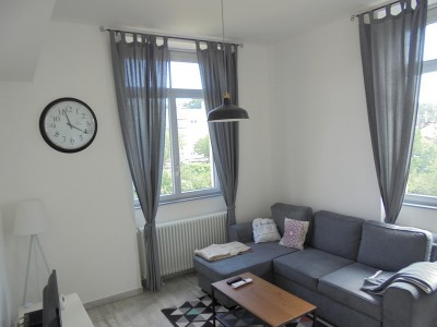 ANNONCE LOCATIVE GIVORS ORS IMMOBILIER.jpg
