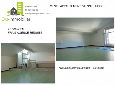 IMMOBILIER VIENNE LUCIEN HUSSEL.PNG