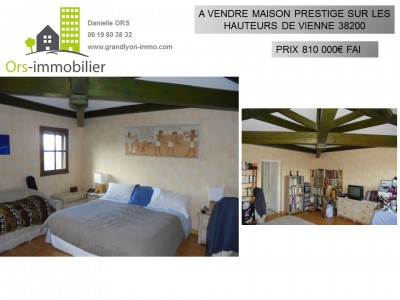 VIENNE ORS IMMOBILIER.JPG