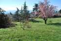 ors ghislaine  terrain saint maurice dargoire.JPG